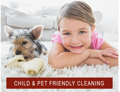 safe cleaning products